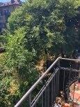 Обзаведен Тристаен апартамент